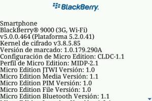 www.centroblackberry.com